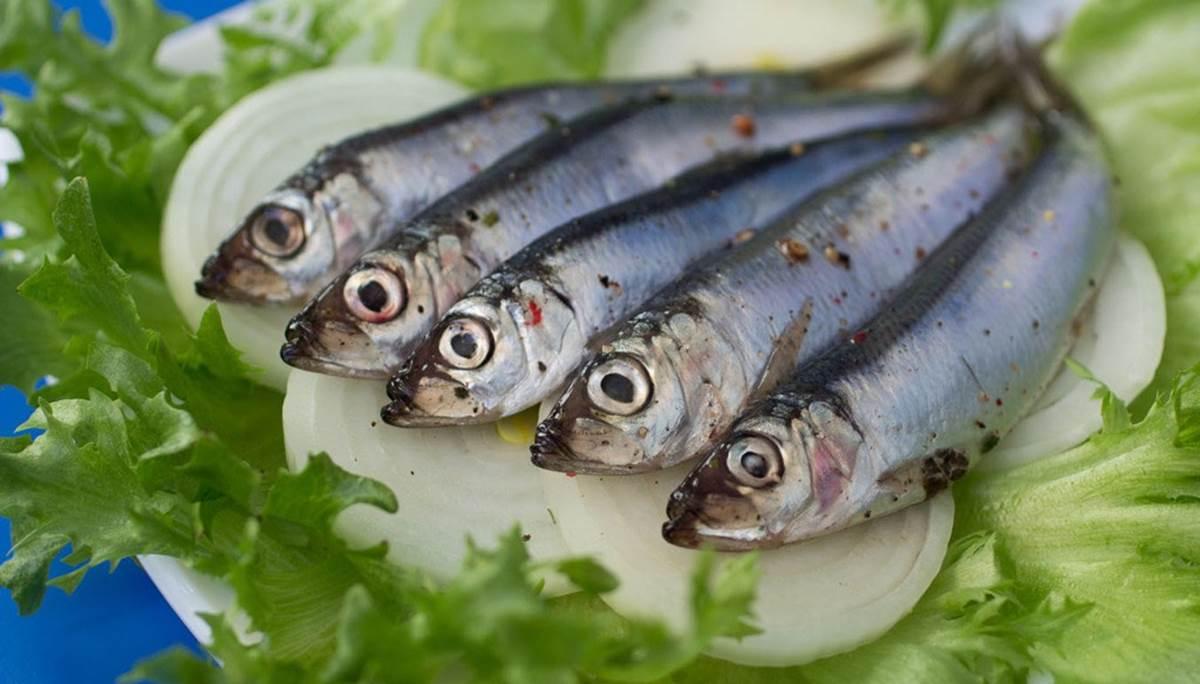 fete-anchois