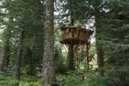Cabanes dans les arbres La Tour d'Auvergne
