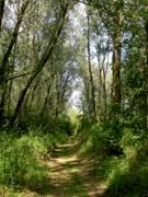 """Sentier de randonnée """"Le Rietz"""""""