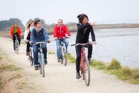 Les Marais de la Presqu'île de Rhuys à Vélo avec Gwen