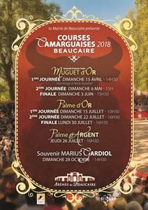 Courses Camarguaises
