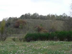 fouquieres-les-lens - grands espaces et patrimoine naturel - les terrils 6 sud de courrieres