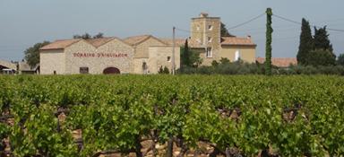 Vignobles des Templiers - Château d'Aiguilhon