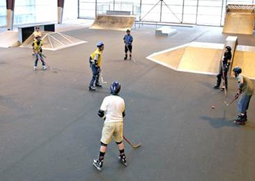 Skatepark -Hall de la Cassette
