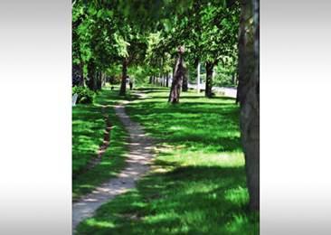 promenade des cours