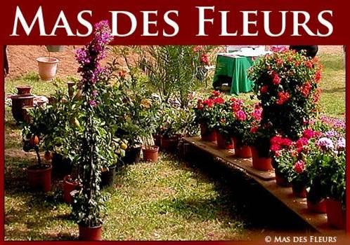 Mas des Fleurs Aigaliers