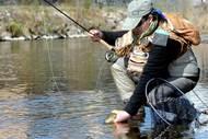 Parcours de pêche No Kill