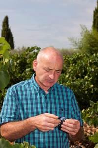 Balade vigneronne au Domaine du Parc Saint-Charles