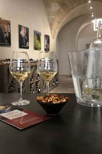 Visite vigneronne