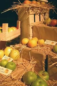 Les Journées de l'arbre, de la plante et du fruit