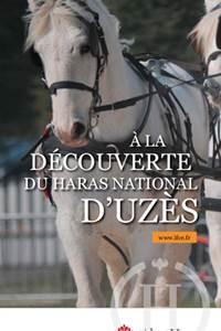 A la découverte du Haras National d'Uzès