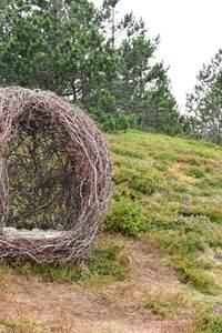 """Parcours Land-Art """"les Balcons de l'Aigoual"""""""