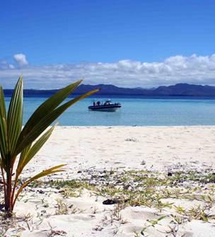 Coconut taxiboat