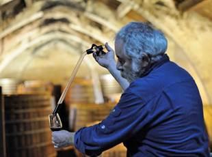 Wine & Heritage Tour