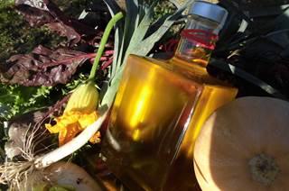 Oleotus : Dégustations autour de l'huile d'olive