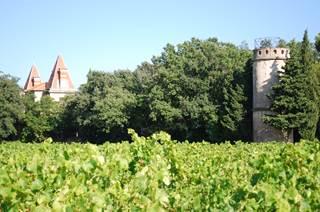 Le Château de Bosc et ses Vins