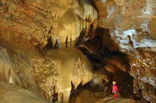 Safari souterrain à la grotte de Trabuc
