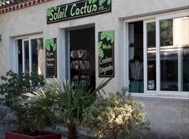 Soleil, cactus... etc