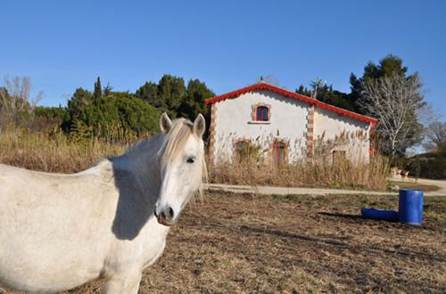 Gîte n°30G10871 – SAINT GILLES – location Gard © Gîtes de France Gard
