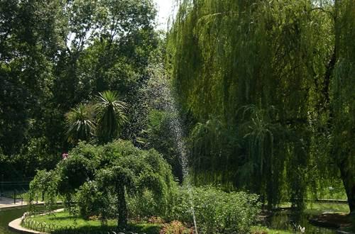 anduze parc des cordeliers ©