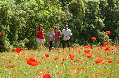Randonnée dans le Gard ©