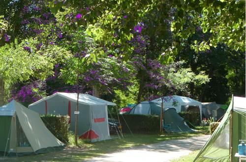 Camping La Grenouille - Allée ©