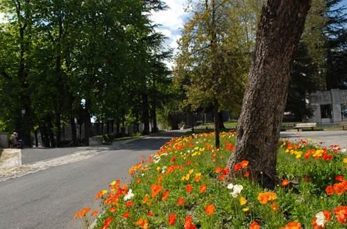 Parc du Bosquet Alès ©