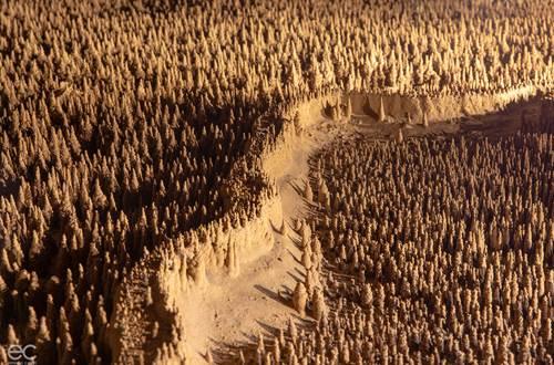 100 000 soldats- Em Castri ©