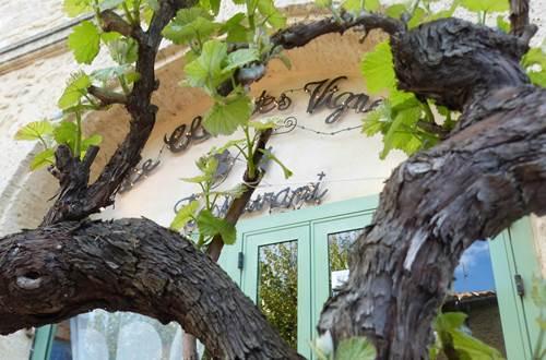 Le clos des vignes  © le clos des vignes