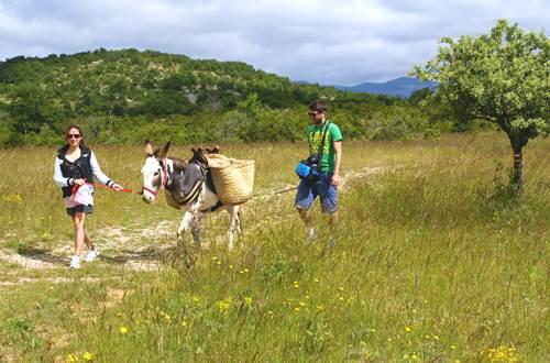 Randonnée avec un âne en Cévennes ©