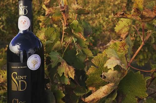 Les Vignerons de St Dezery - ST DEZERY ©