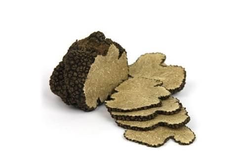 Les Truffières d'Uzès, trufficulteur Michel Tournayre © Les Truffières d'Uzès