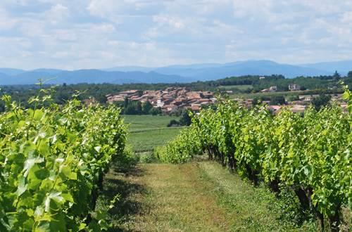 Domaine des Vignes Rouges ©