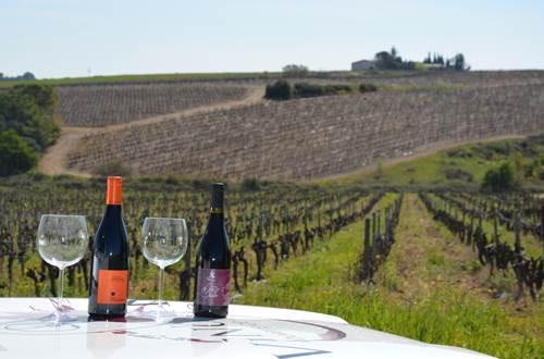 vigno-vins-degustation © Benoit Gaidan