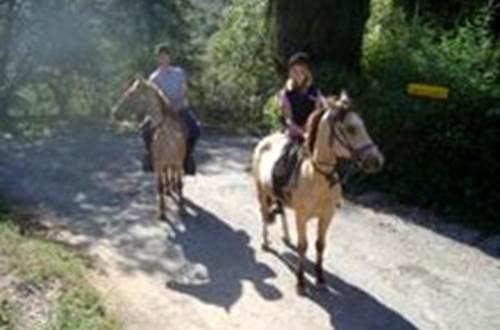 Cévennes équitation de loisirs © Cévennes équitation de loisirs