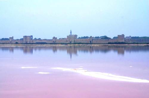 Salin d'Aigues Mortes - Vue sur Aigues Mortes ©
