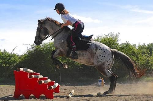 poney-club-mas-nouguier-saut ©