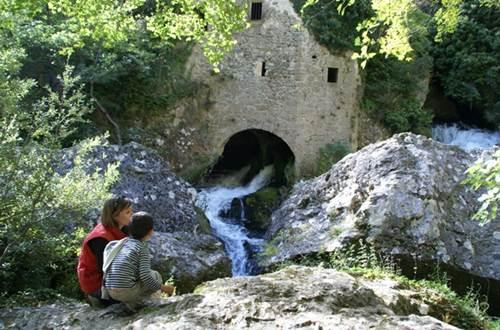 Moulin de la Foux ©