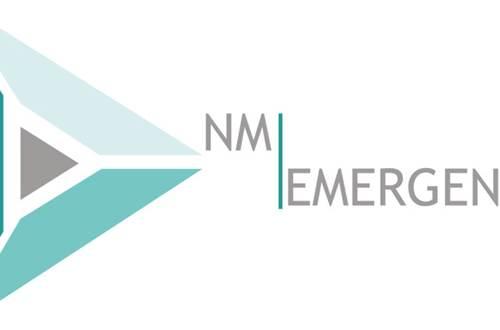 nm emergence Nathalie Metz © nm emergence Nathalie Metz