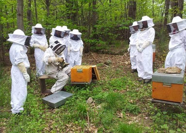 Gilles Roux, l'apiculteur ardéchois
